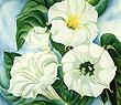 Georgia O'Keeffe : Jimson Weed 1936 : $269