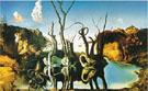 Salvador Dali : Swans Reflecting Elephants : $289