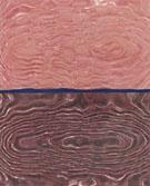 Roy Lichtenstein : Pink Sunnet 1965 : $275
